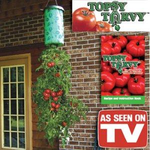 Topsy Tomato